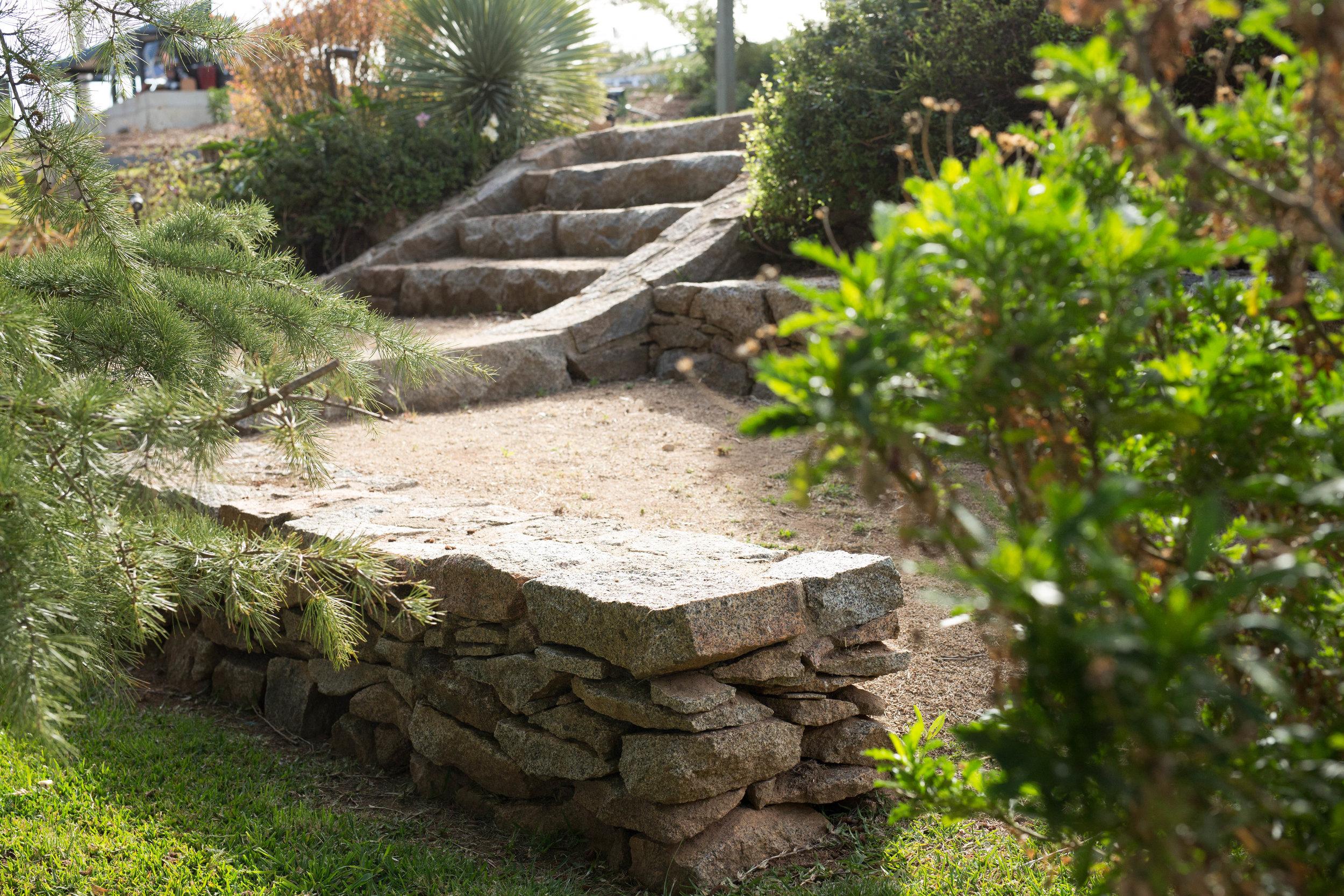 Somewhere Landscape Architects_GARDEN #11 (4).jpg