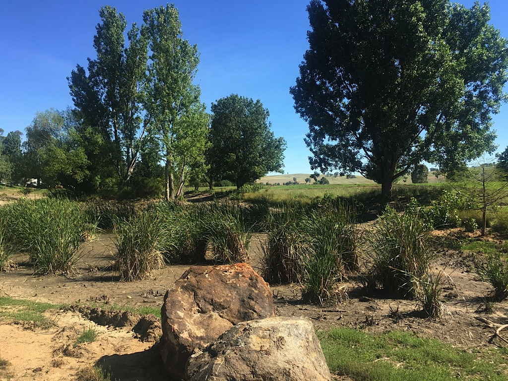 Somewhere Landscape Architects - In Progress.jpg