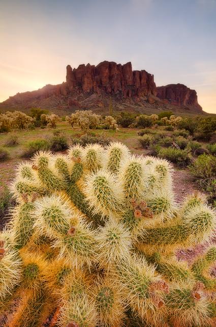 Brand New - Lost Dutchman State Park, AZ