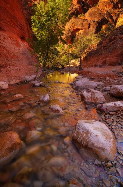 Saturday Morning Stroll - Quail Creek, Red Cliffs Desert Reserve, UT