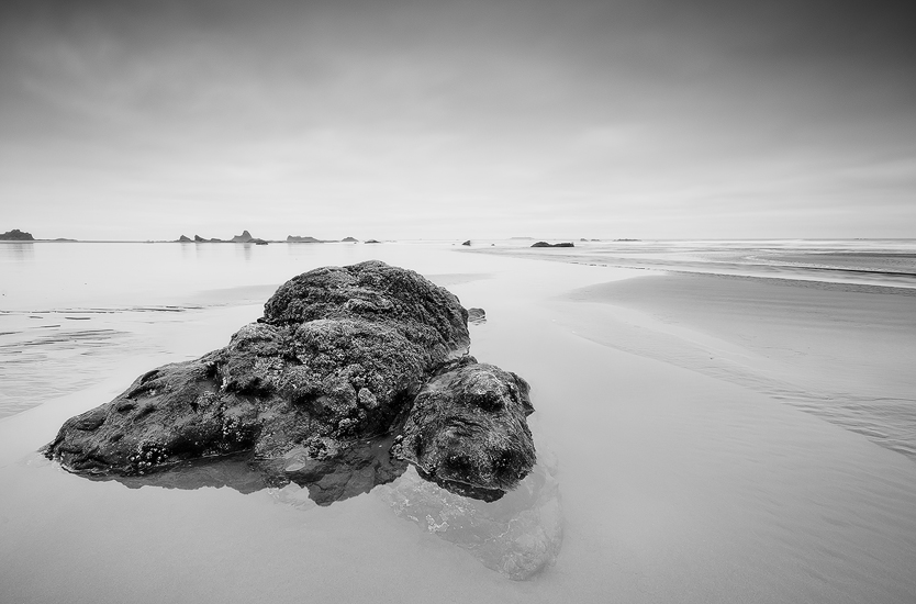 Ruby Grey - Ruby Beach, Olympic National Park, WA