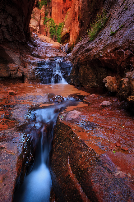 Water Room - Water Canyon, Zion National Park, UT