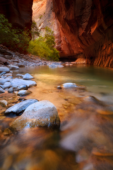 River Run - Zion Narrows, Zion National Park, UT