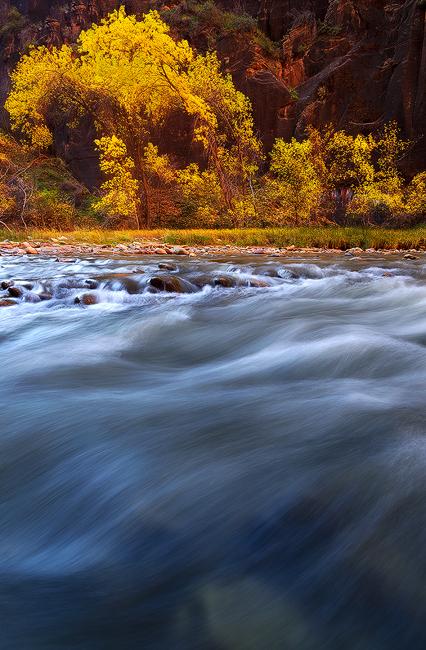 Crash - Virgin River, Zion National Park, UT