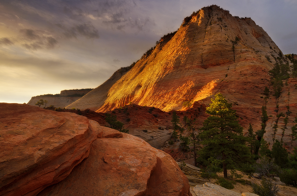 Cannot Be Hid - Checkerboard Mesa, Zion National Park, UT