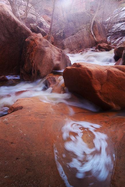 Whirl - Pine Creek, Zion National Park, UT