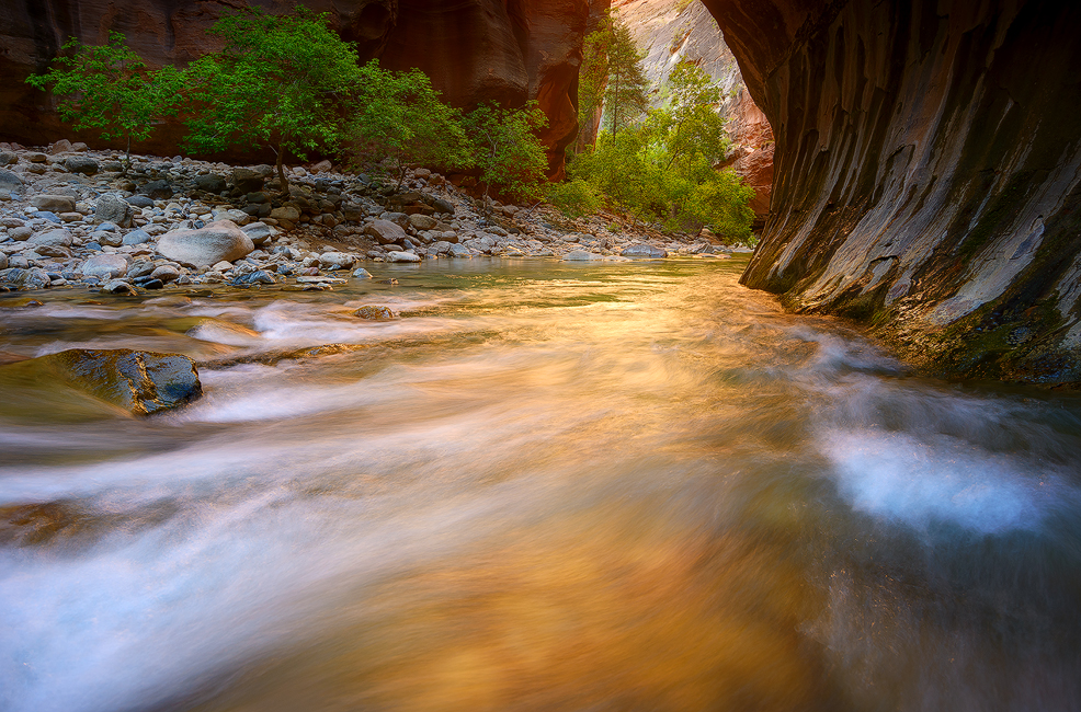 Reflection Glow - The Narrows, Zion National Park, UT