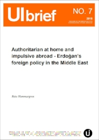 brief-7-authoritarian-at-home-and-impulsive-abroad---erdoans-foreign-policy-in-the-middle-east.jpg
