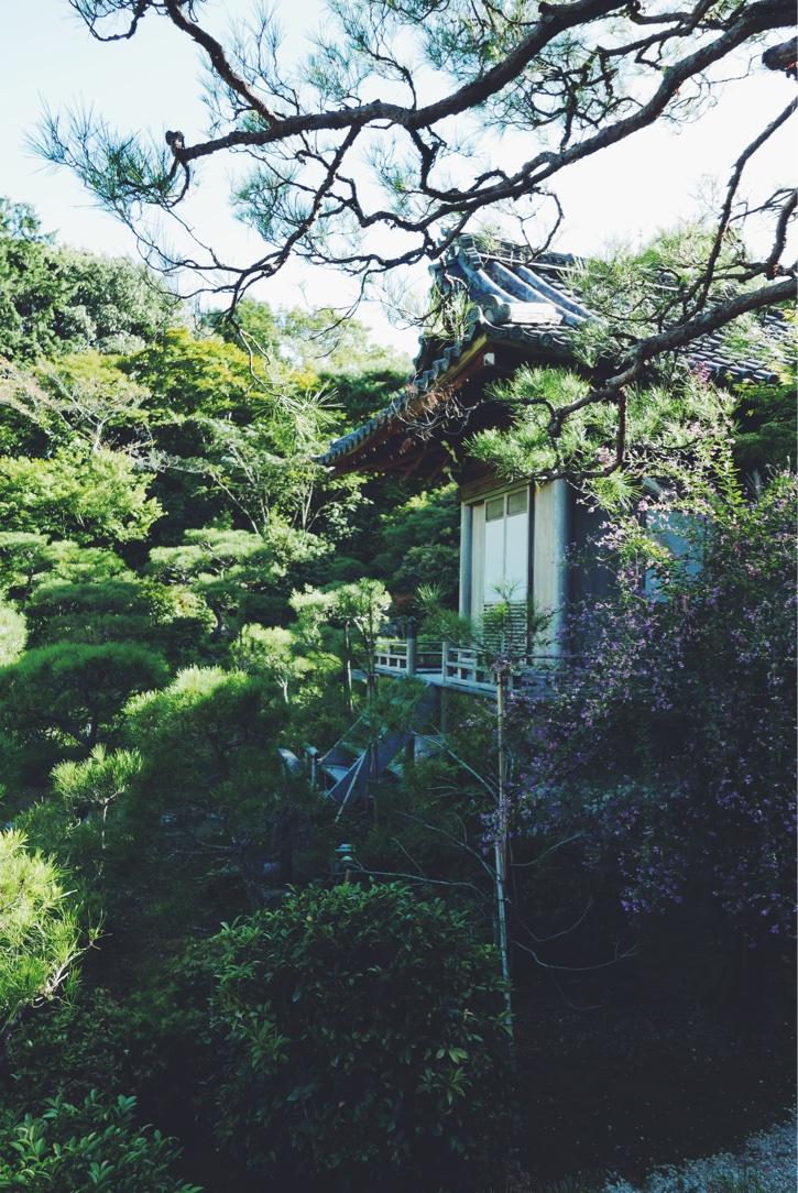 The garden villa of Ohkochi-Sanso.