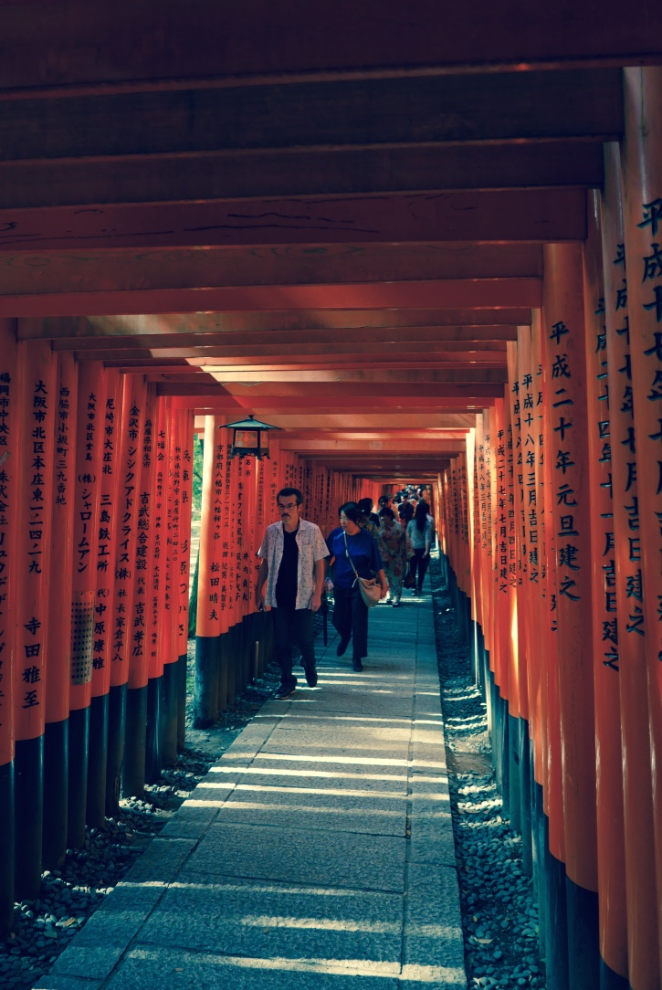 A trail at   Fushimi Inari-taisha covered by thousands of Torii gates,  donated by individuals and businesses from across Japan  .