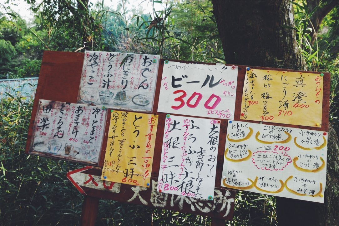 Forest food offerings.
