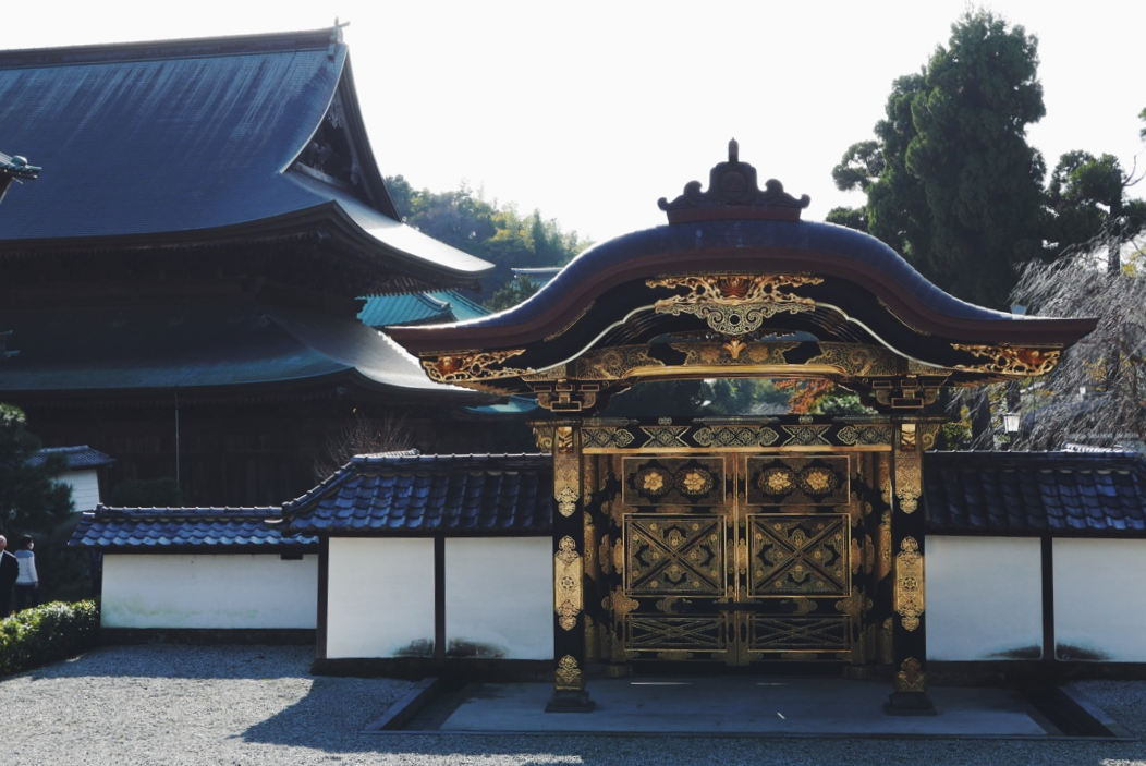 The view from the Hojo (Main Hall).