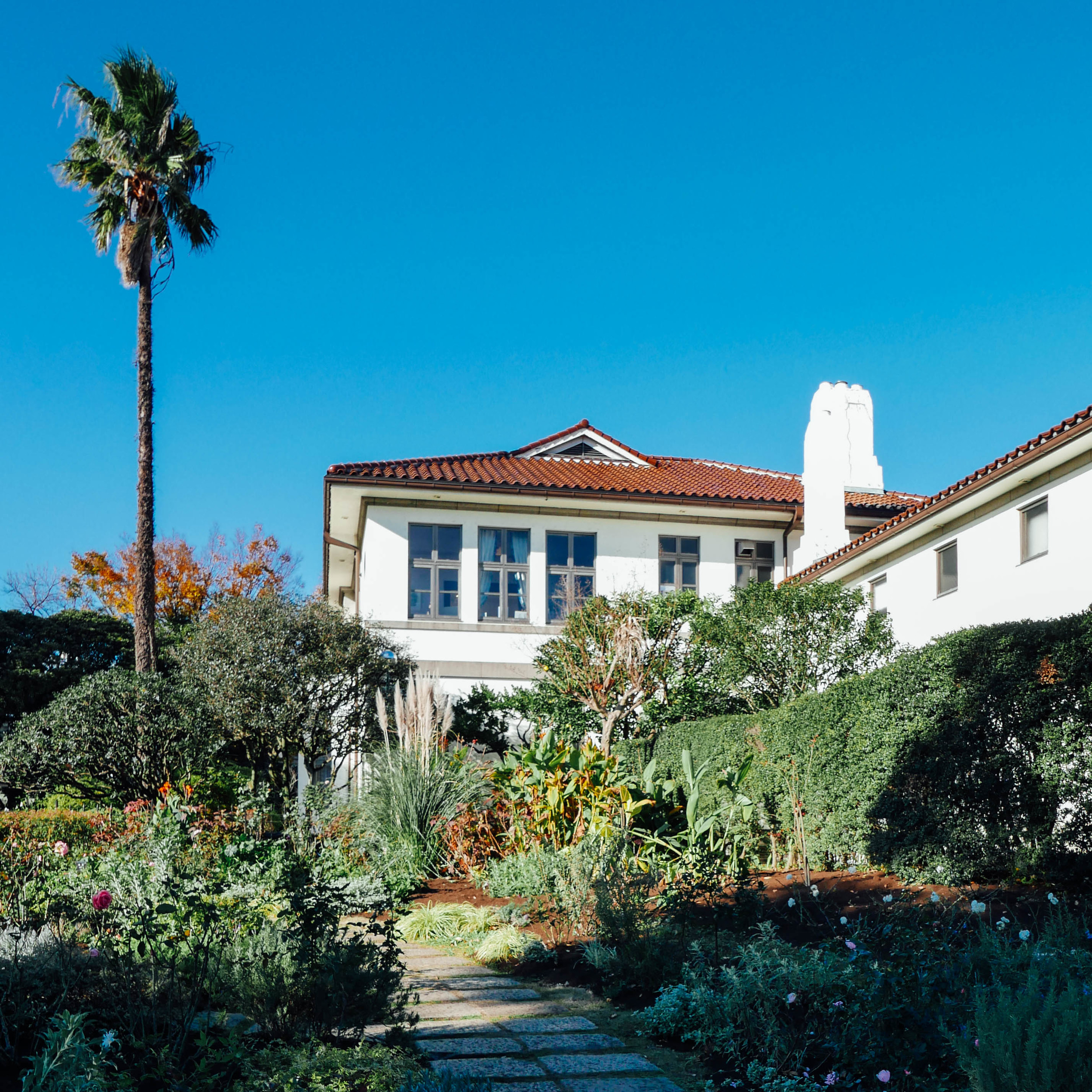 Palms and Spanish-style homes - feels like I'm back in California!