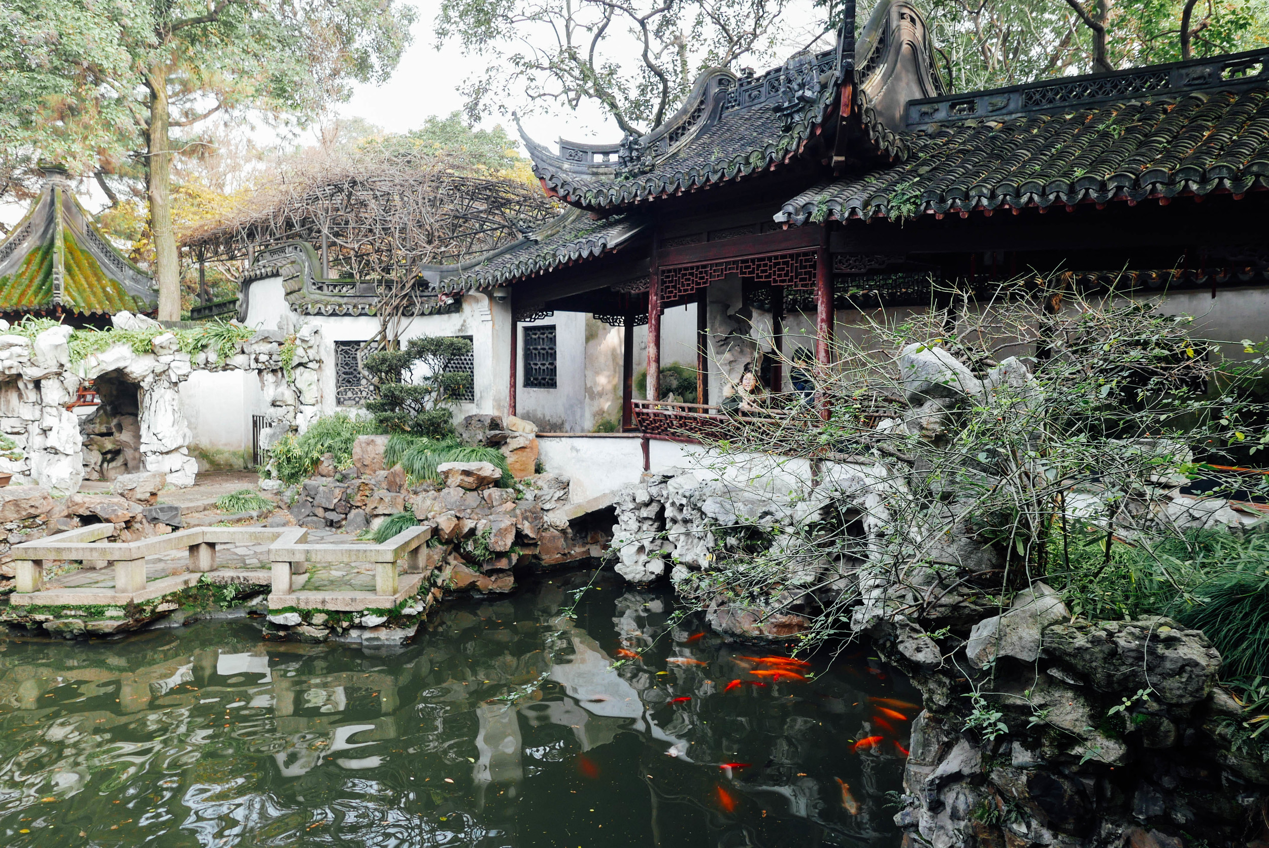 Scenes from a Chinese garden.