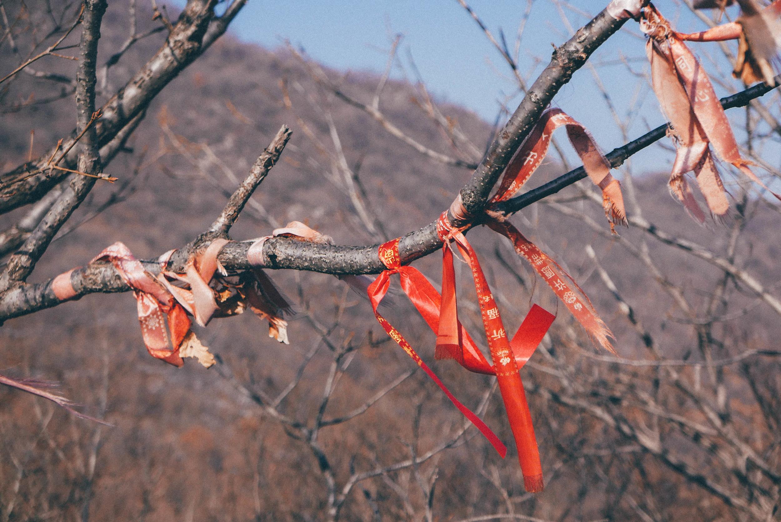 Wish ribbons.