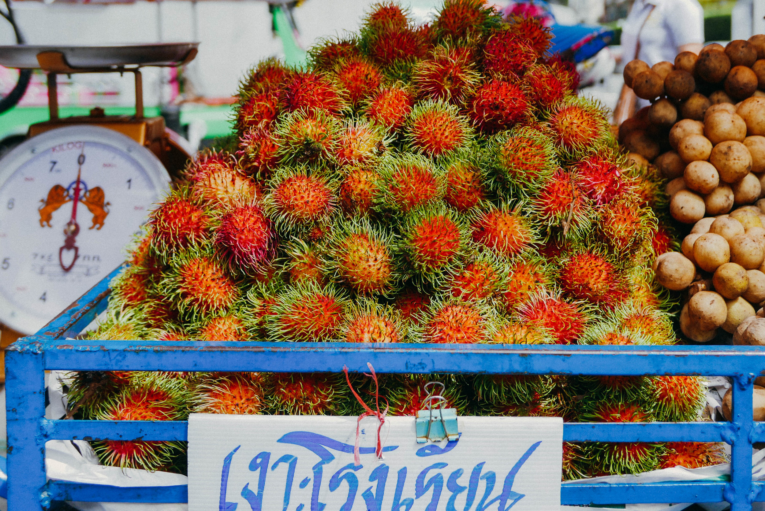 "{above: rambutan, derived from the malay word meaning ""hairy"" 