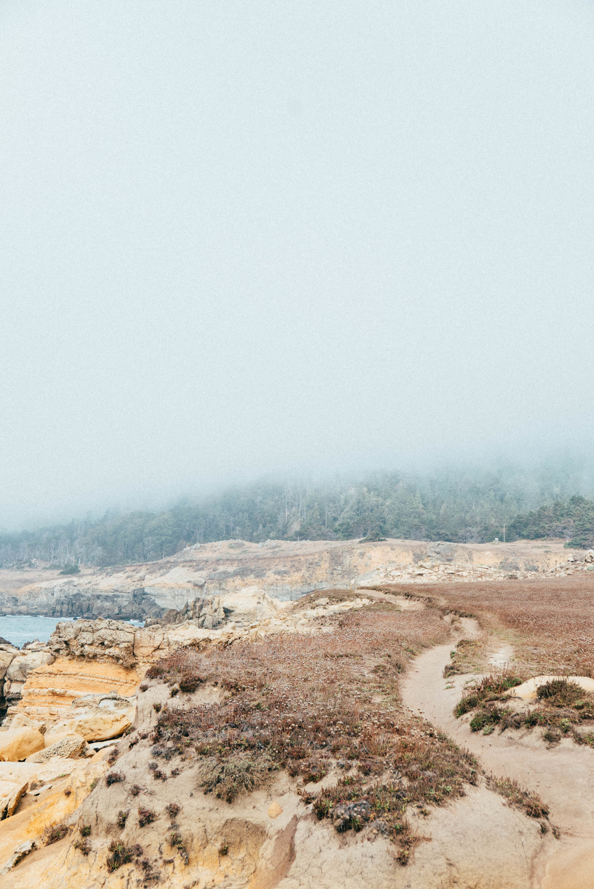 Salt Point State Park-24.jpg