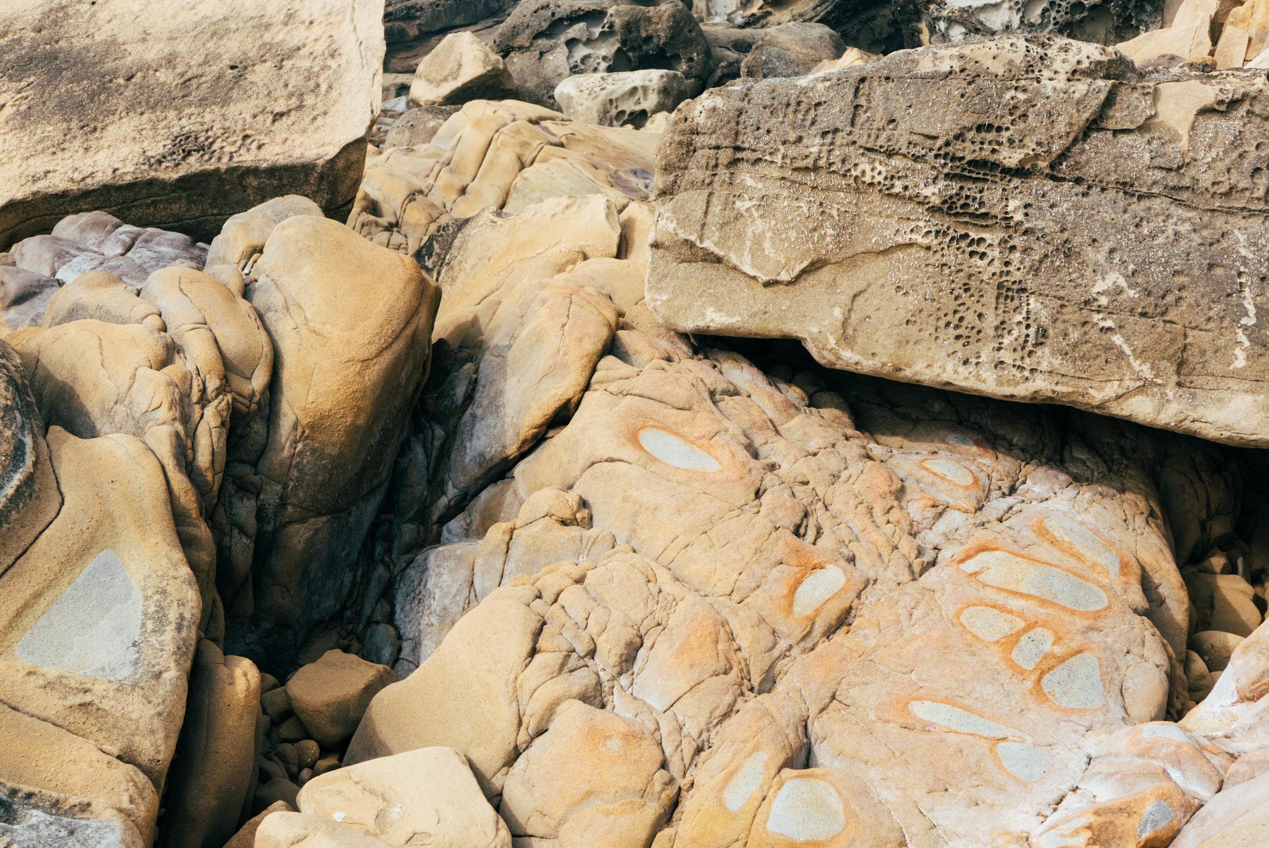 Salt Point State Park-62.jpg