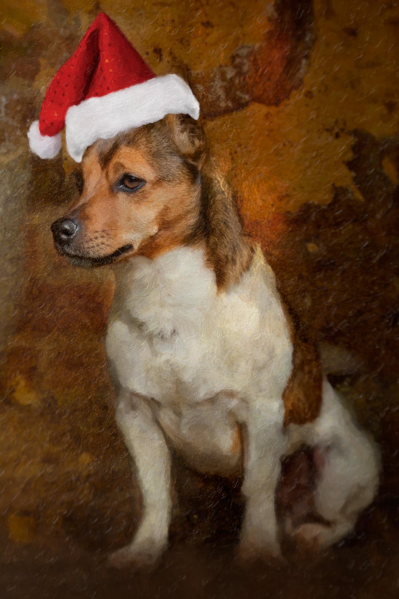 GOSH I HOPE CHRISTMAS COMES SOON!