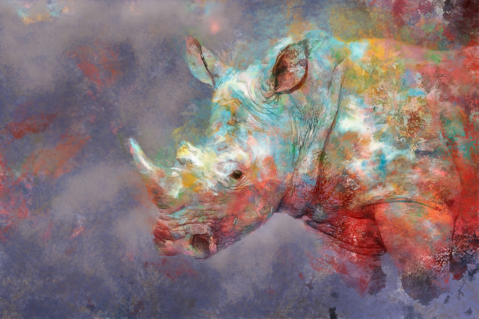 RHINO...Abstract.
