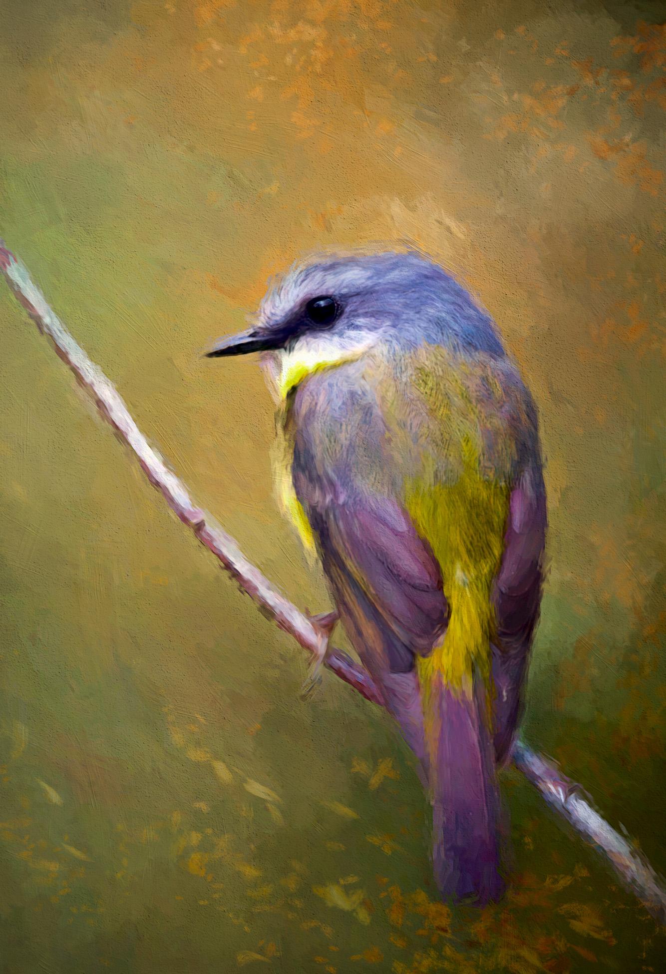 Little birdie.