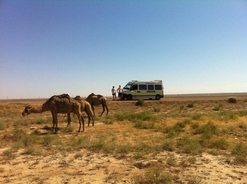 camels and ambulance.jpg