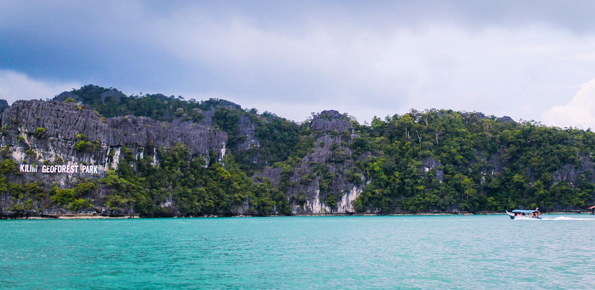 Mangrove cruise; langkawi, malaysia