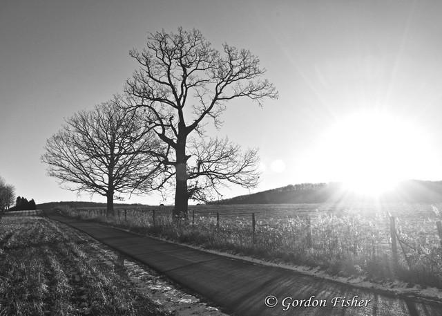 Hickory Ridge Sunrise