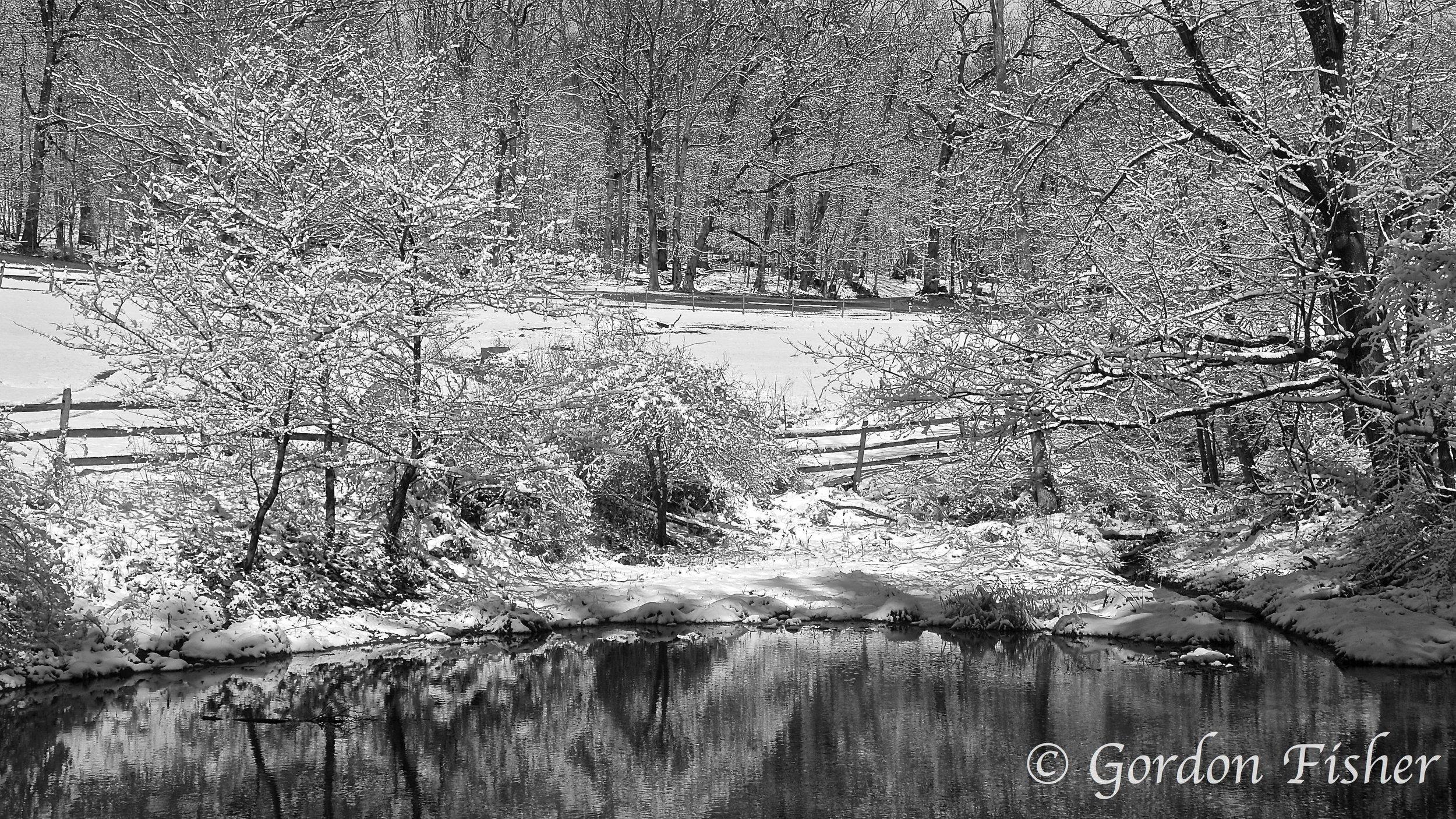 Early Spring Snowfall