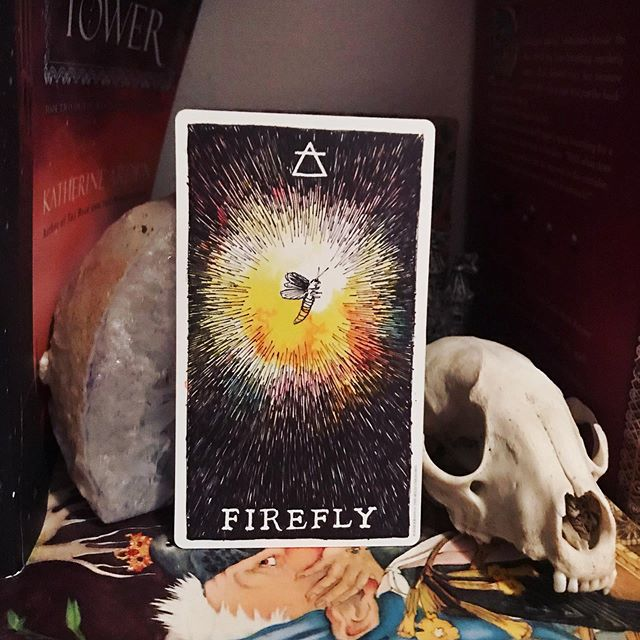 #dailytarot 8/19 ✨ Firefly ✨ Today's #message is a reminder that when inspiration strikes you can't waste time on questioning or doubting yourself. It's far too easy to talk yourself out of trying and miss the window of opportunity for something amazing. Not everything needs to involve an elaborate long-term plan. Sometimes you just need to seize hold of an idea and act on it before it slips your mind altogether. ✨ . . . #wildunknown #twuanimalspirit #tarot #tarotcards #taroteverydamnday #tarotreadersofinstagram #witchythings #witchyvibes #witchlife #witchesofinstagram🔮🌙 #tarotcommunity #tarotdeck #tarotreadings #tarotspread #tarotlove  #modernwitch #witchstagram  #youaremagic #citywitch #spiritjunkie #witchesofig