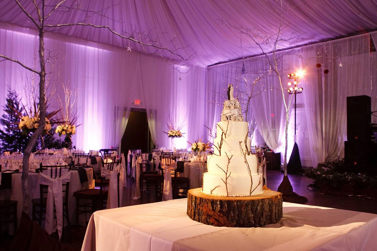 wedding-event-lighting-veritas-winery.jpg