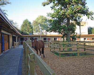 Ebony Horse Club