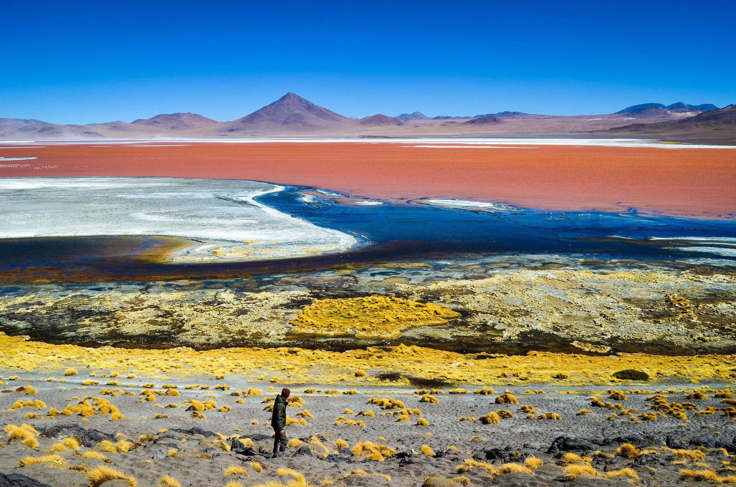 Laguna Colorada, Bolivia:  Print  //  Framed Prints  //  Canvas Prints