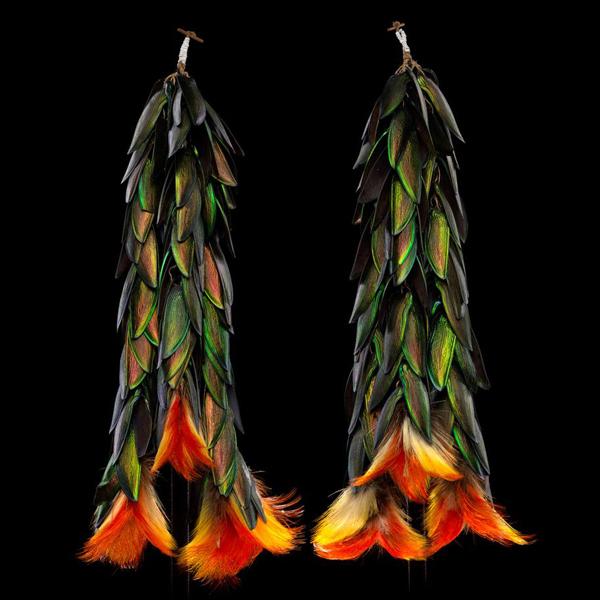 Beetle wings toucan feathers_600px.jpg