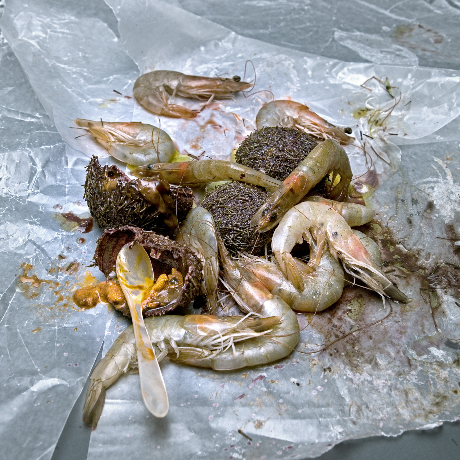 Shrimps and sea urchins with an ablone spoon