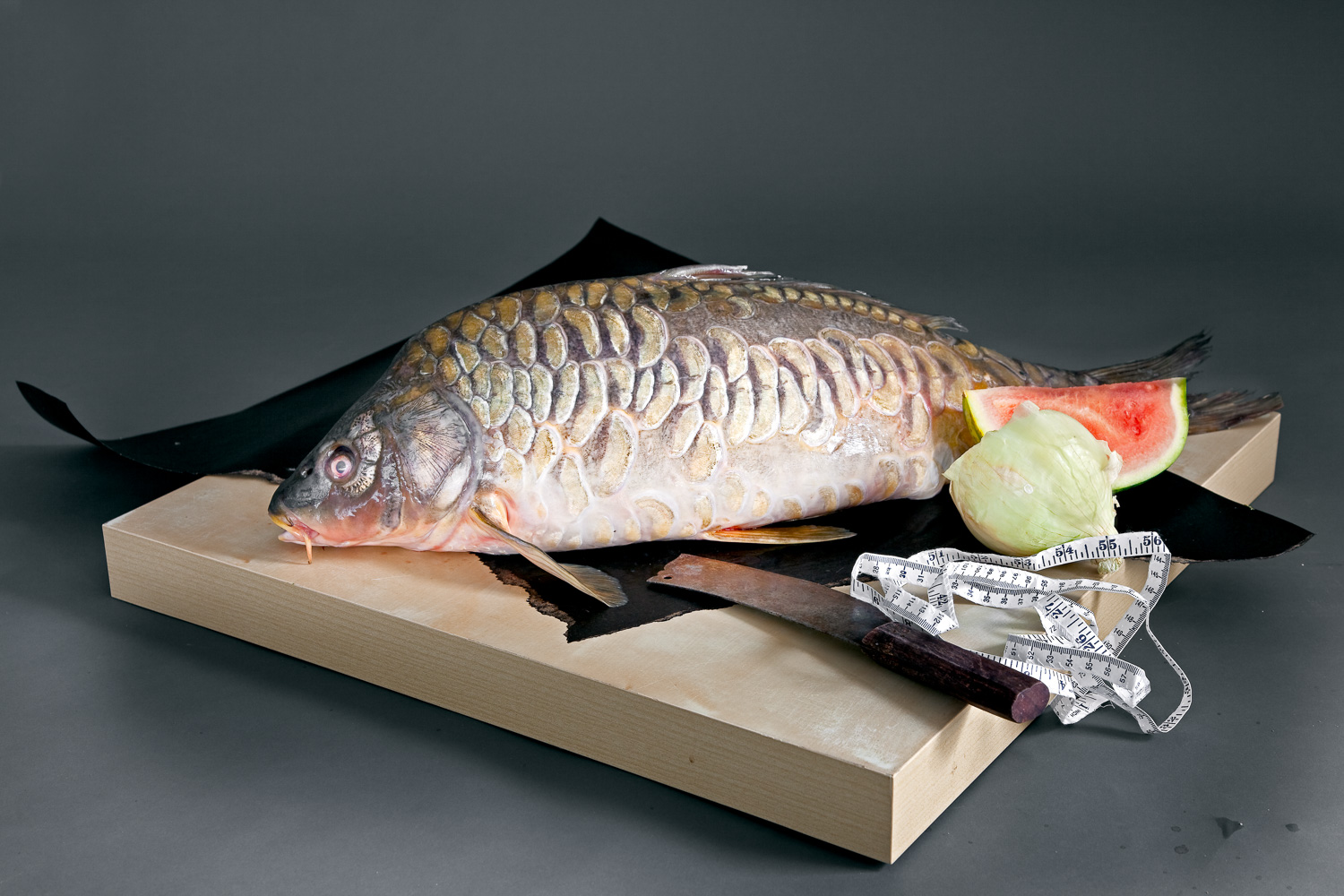There are more Carp raised for food than any other fish and no two look alike.