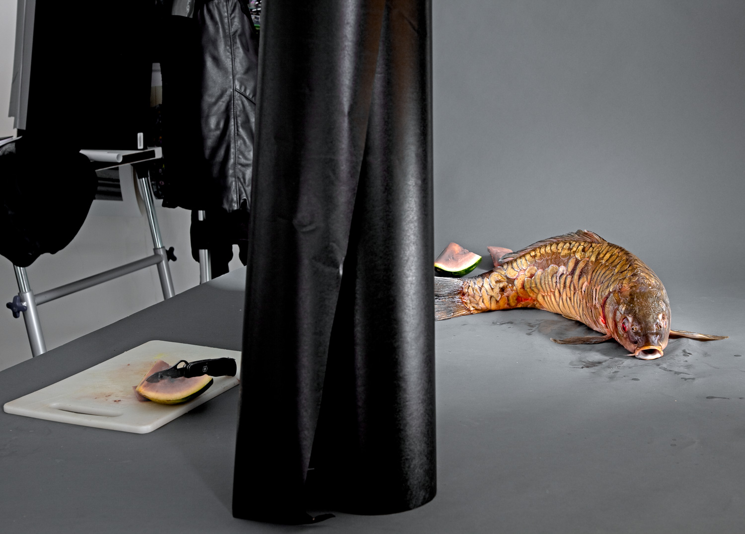 A Carp on my studio table before the final arrangement for a picture.