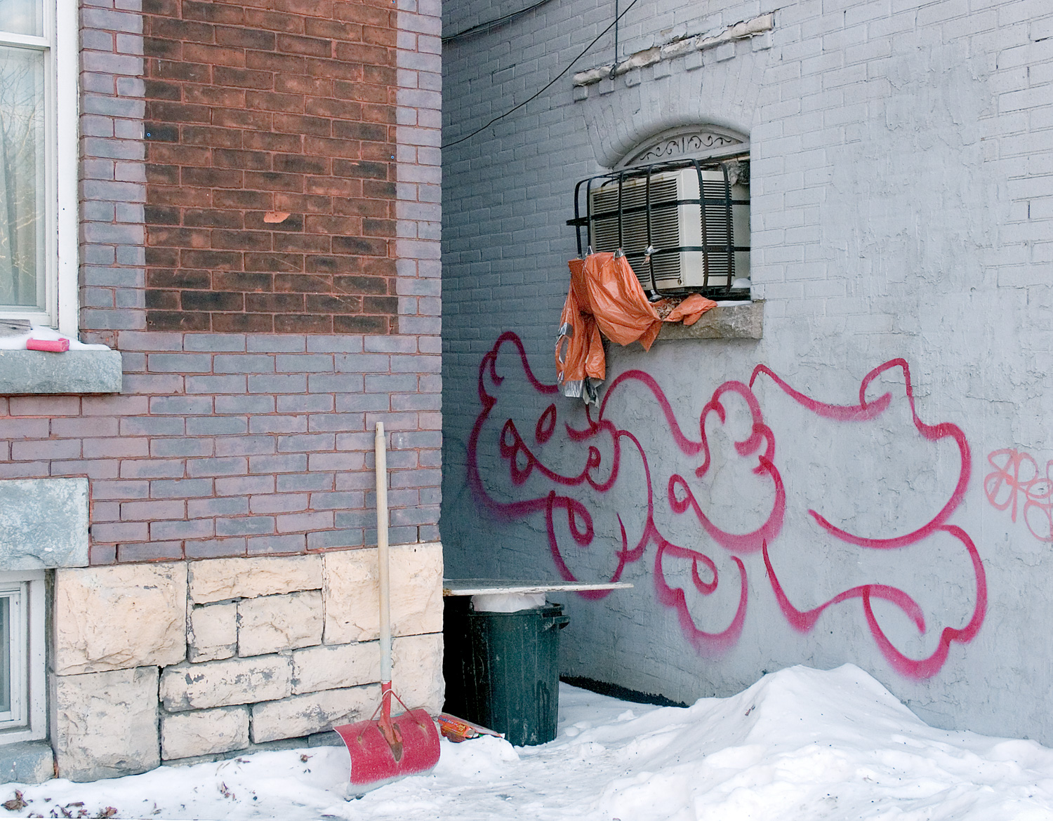 Dragon Graffitti
