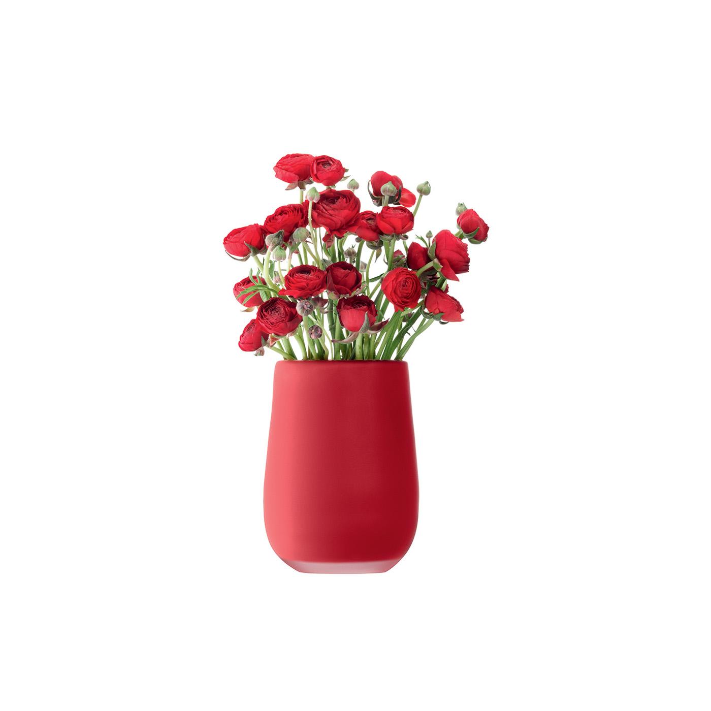 Vase SILK  CHF 96.00 Höhe 23 cm