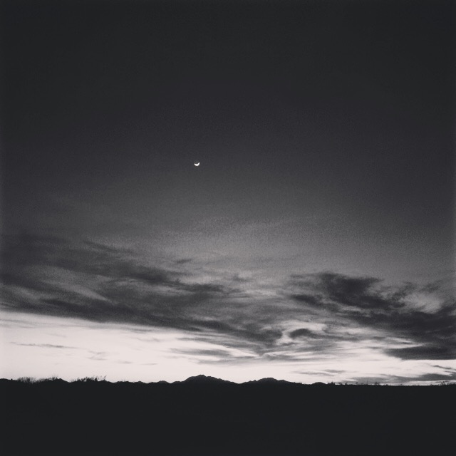 Howlin' at the moon. Arizona Desert. February 2016.