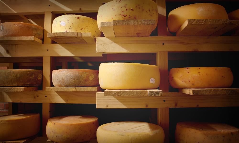 Carlow Farmhouse Cheese