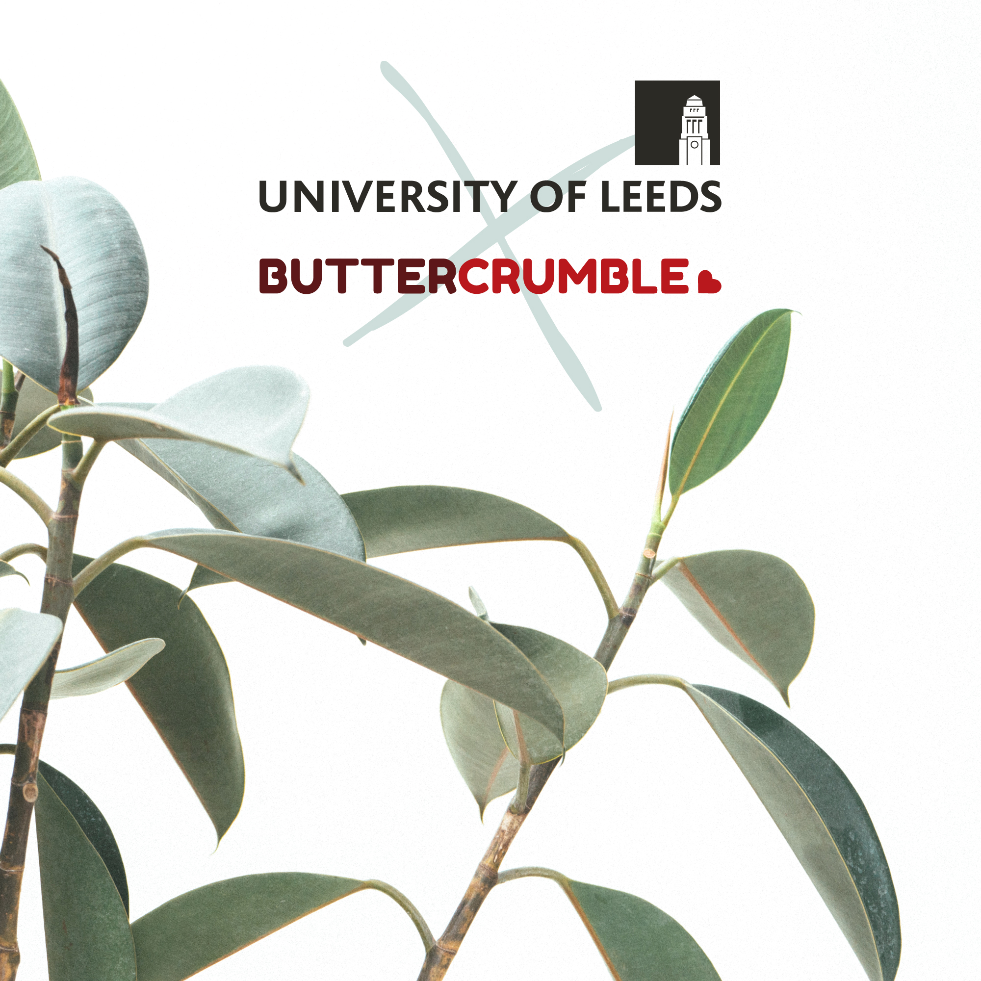 UoL-x-Buttercrumble----Leeds-Creative-Labs--Climate-Edition.jpg