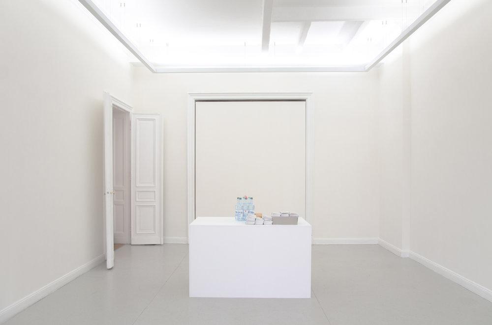 01_Installation+view,+Paul+Makowsky,+FREE,+Kunstsaele+Berlin,+2017.jpg