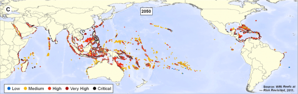 The amount of reefs at low risk (blue) will be almost non-existent by mid-century. By 2050, most reefs will be at high (red) to critical (black) risk. Photo credit: World Resources Institute