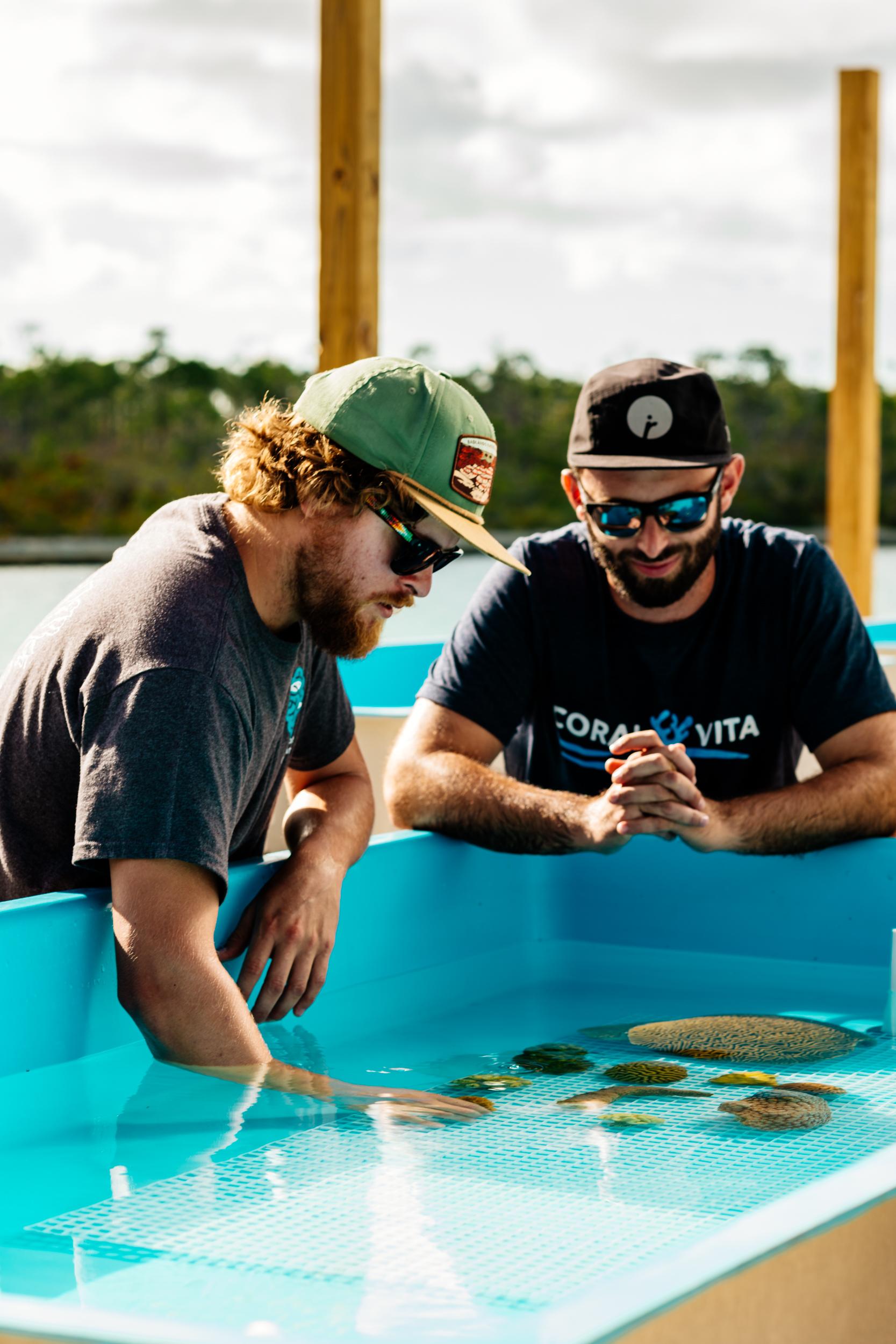 Coral Vita's founders Gator Halpern and Sam Teicher.