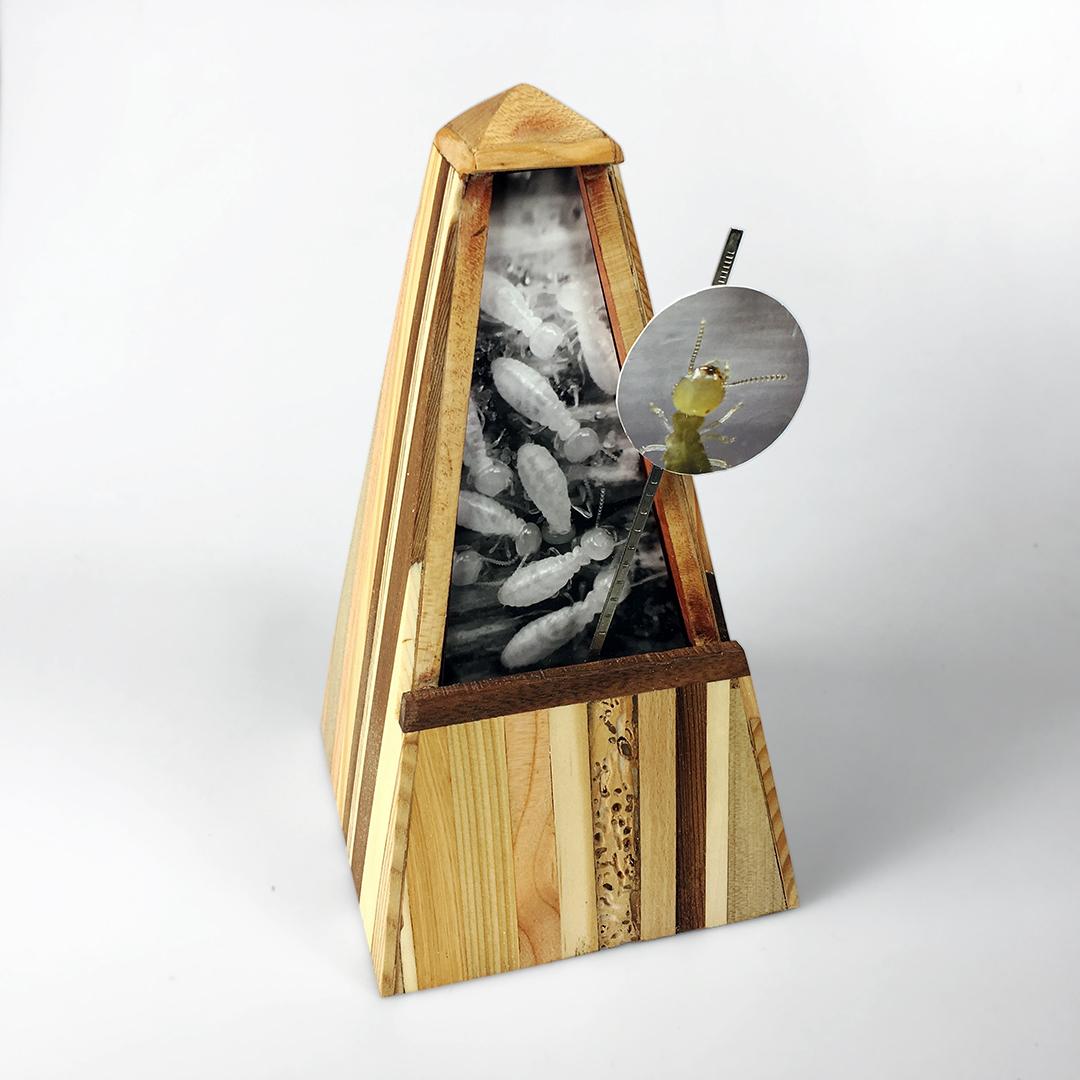 Termite-Eaten Metronome (2017)