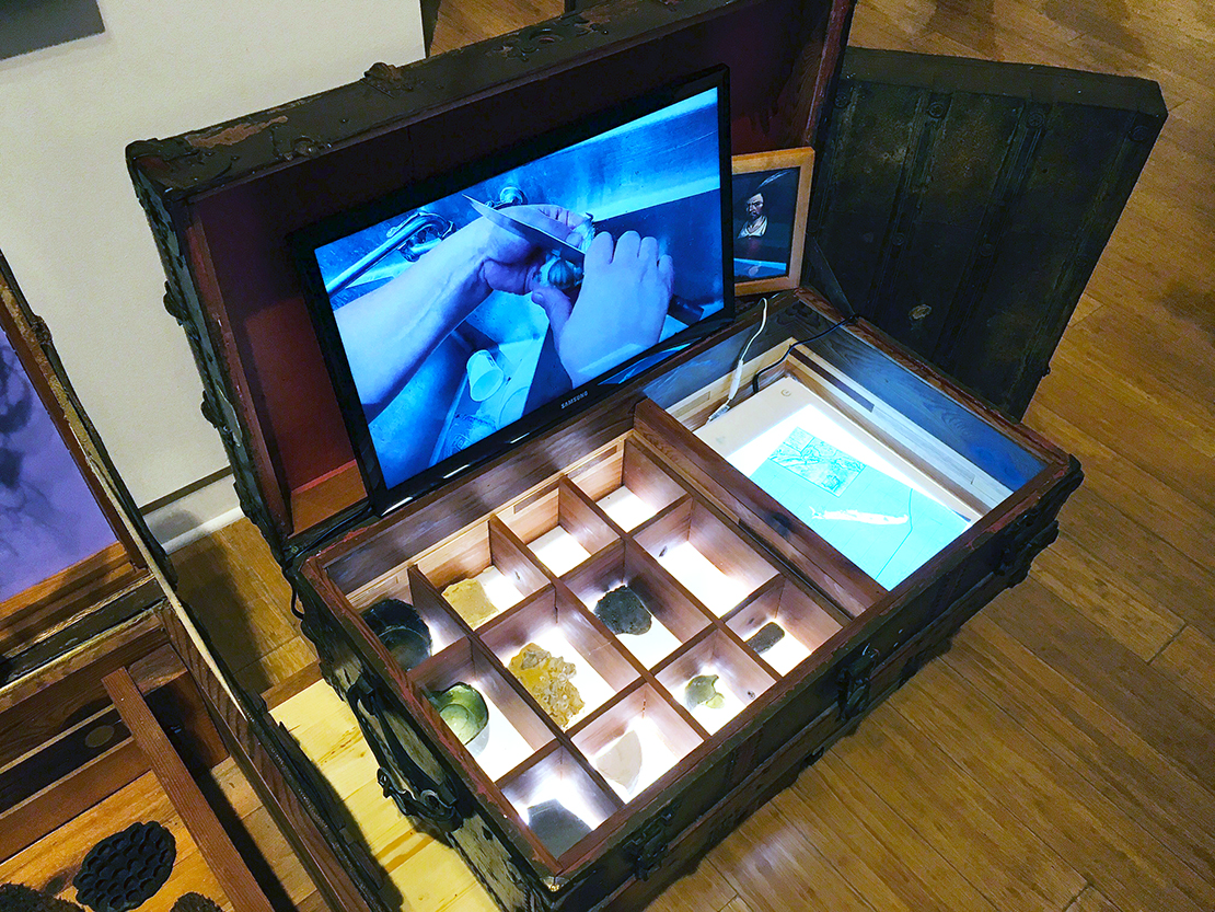 Crude Life Portable Biodiversity Museum for the Gulf of Mexico, Sean Miller in collaboration with Brandon Ballengee, Video by Monique Verdin (Lost Civilizations Gallery), 2017