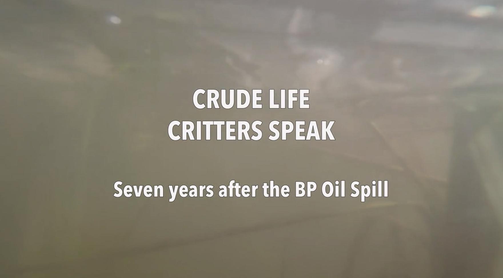 "Rachel Mayeri's video ""Crude Life Critters Speak Seven Years After the BP Oil Spill"""