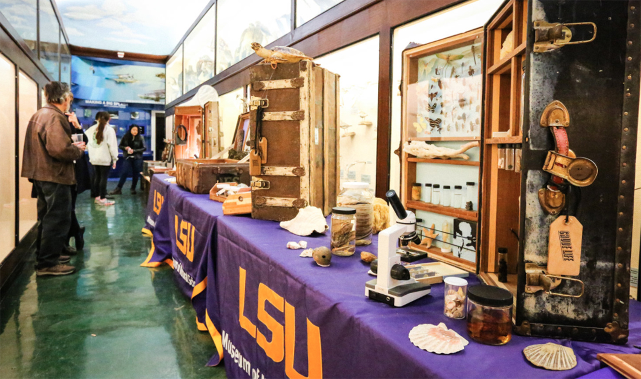 The Crude Life Portable Museum, A Citizen Art and Science Investigation of Gulf of Mexico Biodiversity after the Deepwater Horizon Oil Spill,  popped into the LSU Museum of Natural Science  in January, 2018, making a splash for curious visitors wanting to escape unusually icy weather in Louisiana. Learn more about the museum from its creators below!     CLICK HERE FOR FULL ARTICLE