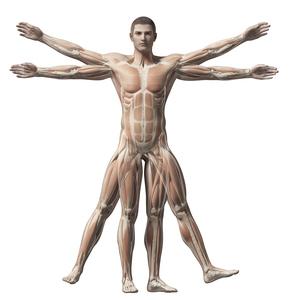 entorse osteopathe paris
